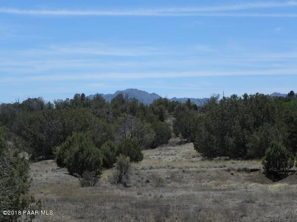 1545 N Three Ranch Road, Chino Valley, AZ 86323 (#1012433) :: HYLAND/SCHNEIDER TEAM