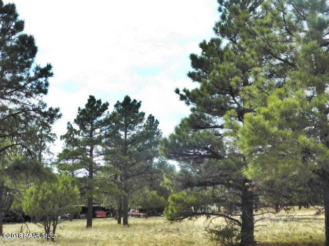66 N Scenic, Williams, AZ 86046 (#1012477) :: HYLAND/SCHNEIDER TEAM