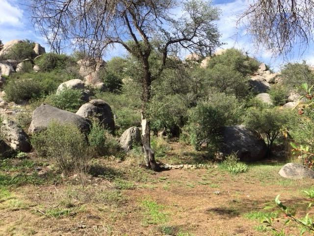16932 W Willow Avenue, Yarnell, AZ 85362 (#1014877) :: HYLAND/SCHNEIDER TEAM