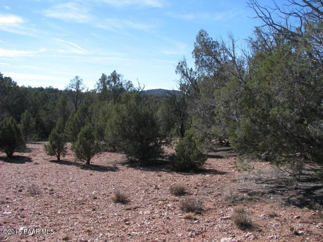 472 Off Of Cattle Drive, Ash Fork, AZ 86320 (#1015753) :: HYLAND/SCHNEIDER TEAM