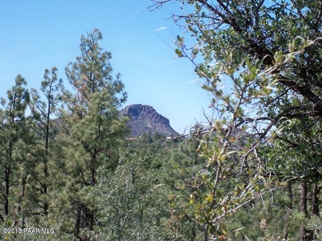 1675 S Sunnyside Road, Prescott, AZ 86303 (#1016120) :: The Kingsbury Group