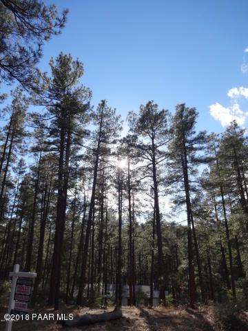 5717 W Dearing Road, Prescott, AZ 86305 (MLS #1016912) :: Conway Real Estate