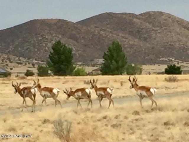 10150 E Dawn To Milky Way, Prescott Valley, AZ 86315 (#1019526) :: HYLAND/SCHNEIDER TEAM