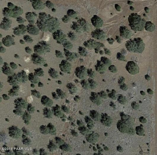2520 Pearl Lane, Ash Fork, AZ 86320 (#1020619) :: West USA Realty of Prescott