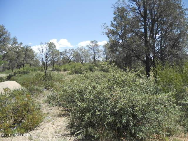9790 Clear Fork Road, Prescott, AZ 86305 (#1022680) :: Shelly Watne