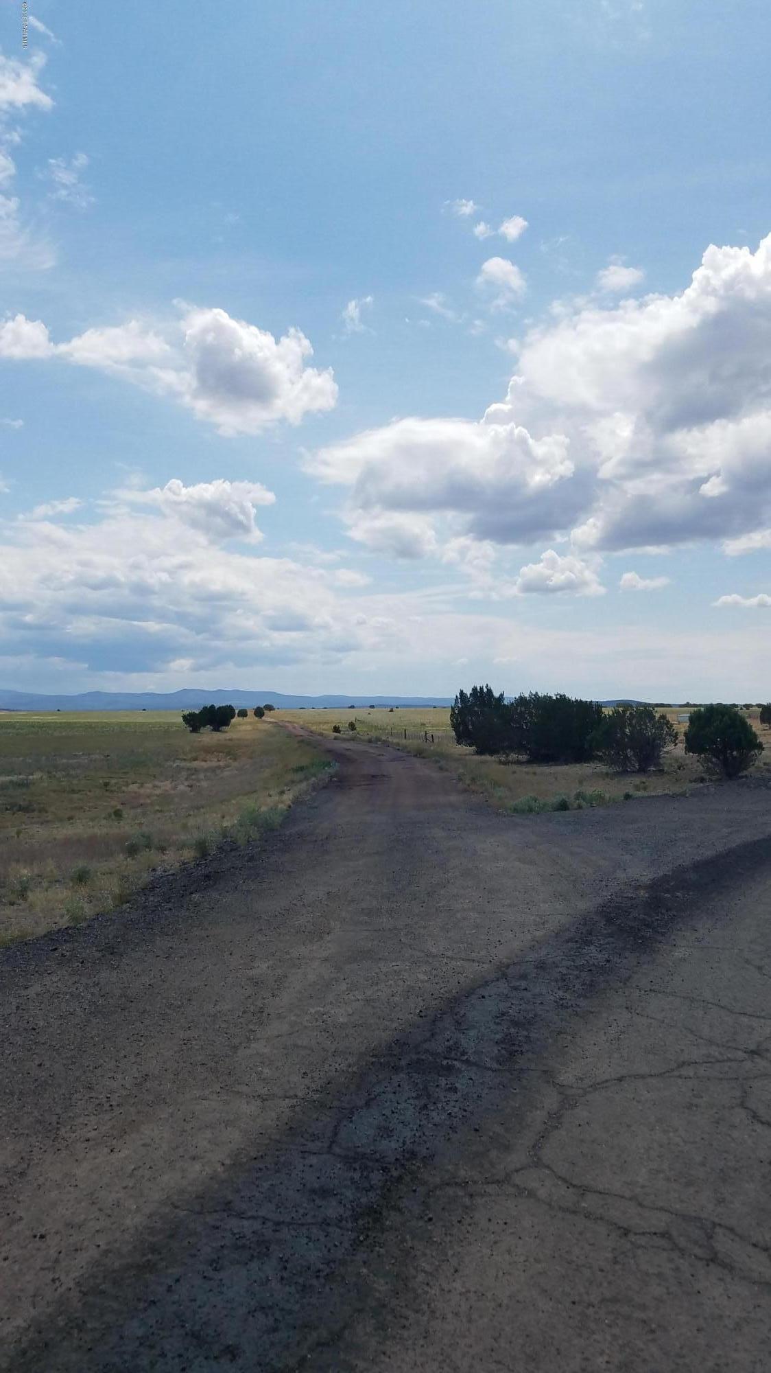 264c Old Highway 66 - Photo 1
