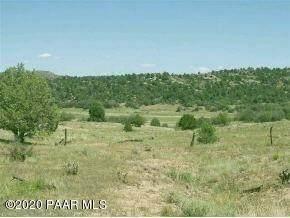 12955 N Puntenney Road, Prescott, AZ 86305 (MLS #1028625) :: Conway Real Estate