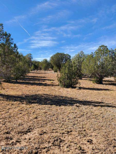 349 Sierra Verde Ranch, Seligman, AZ 86337 (#1031186) :: West USA Realty of Prescott