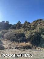 650 Canyon Drive - Photo 11