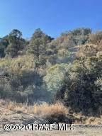 650 Canyon Drive - Photo 5