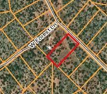 54584 N Forest Grove Way, Seligman, AZ 86337 (#1037577) :: Shelly Watne