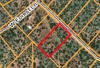 54534 N Forest Grove Way, Seligman, AZ 86337 (#1037578) :: Shelly Watne