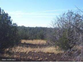 2323 Rincon Drive, Ash Fork, AZ 86320 (MLS #1038789) :: Conway Real Estate