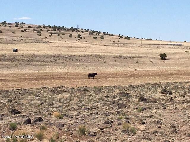 00 W Rock Ledge Road, Seligman, AZ 86337 (MLS #1039119) :: Conway Real Estate