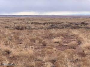 0 Sun Valley Road, Holbrook, AZ 86025 (#1040719) :: Shelly Watne