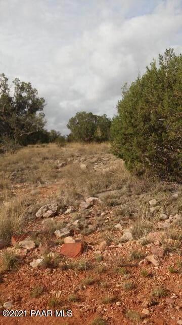 58630 N Tanque Circle, Seligman, AZ 86337 (#1041321) :: Shelly Watne