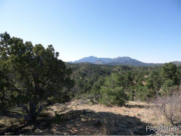 6335 W Almosta Ranch Road, Prescott, AZ 86305 (#984244) :: The Kingsbury Group