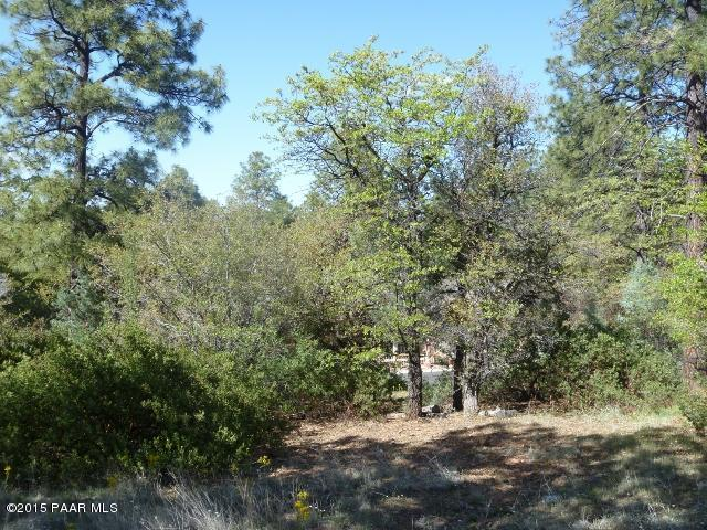 1046 Hyland Circle, Prescott, AZ 86303 (#986824) :: HYLAND/SCHNEIDER TEAM