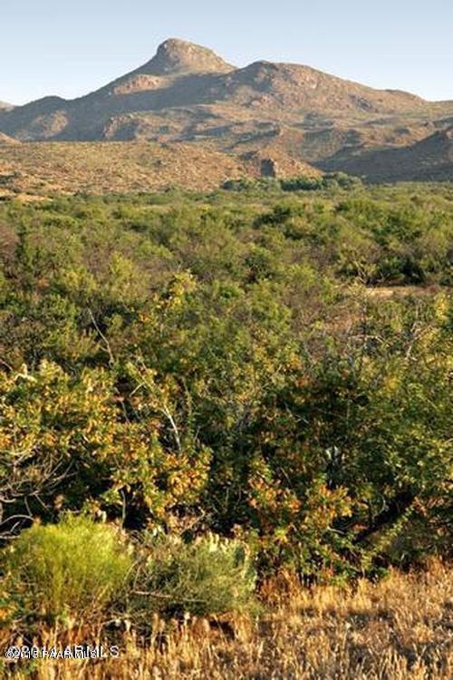 36 Ac E Poco Bueno Road, Hillside, AZ 86321 (#991425) :: The Kingsbury Group