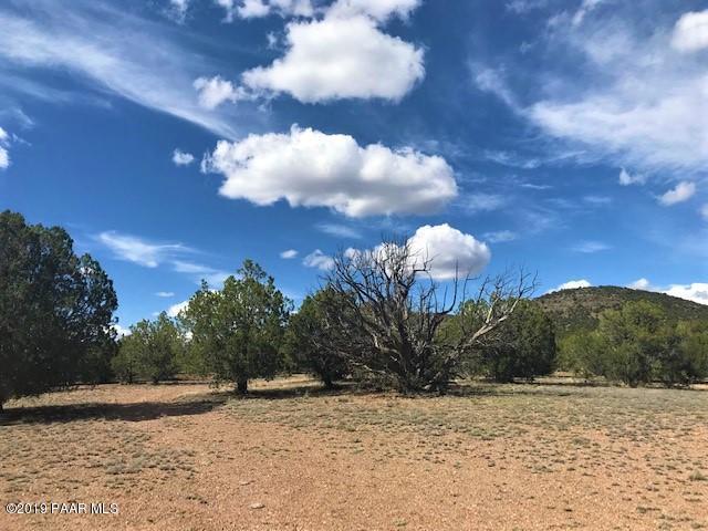 43739 N Caliente Wind Way, Seligman, AZ 86337 (#1019380) :: HYLAND/SCHNEIDER TEAM