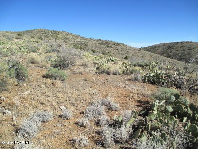 0 S Hunter Circle Road, Kirkland, AZ 86332 (#992067) :: HYLAND/SCHNEIDER TEAM