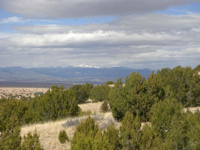 TBD Pope Valley Rd #23, Pueblo, CO 81005 (MLS #173057) :: The All Star Team of Keller Williams Freedom Realty