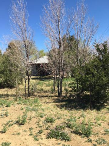 5954 E Hwy 96 N/A, Olney Springs, CO 81062 (MLS #179392) :: The All Star Team of Keller Williams Freedom Realty