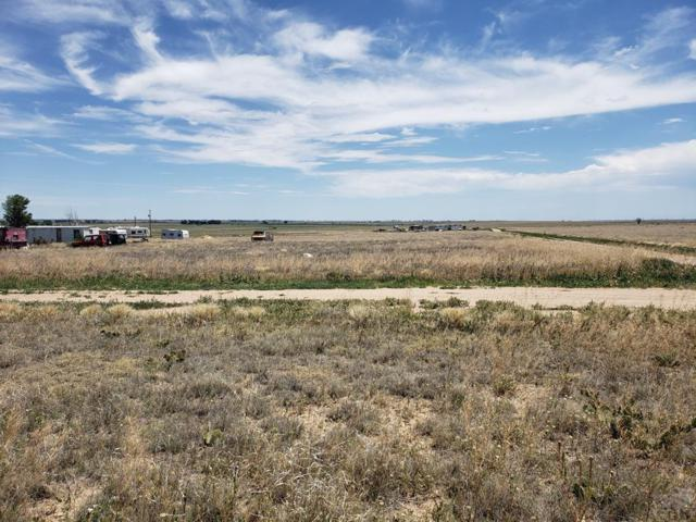 none Dodge Rd #6, Hasty, CO 81044 (MLS #180602) :: The All Star Team of Keller Williams Freedom Realty