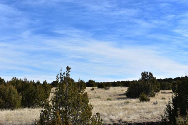 TBD Canyon Heights Rd #0, Pueblo, CO 81005 (MLS #180710) :: The All Star Team of Keller Williams Freedom Realty