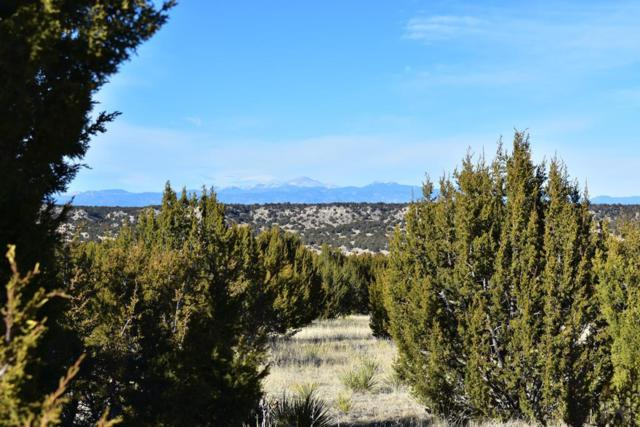 TBD Canyon Heights Rd #0, Pueblo, CO 81005 (MLS #180712) :: The All Star Team