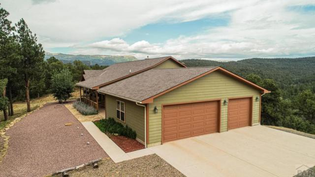33051 Mountain Meadow Overlook, Trinidad, CO 81082 (MLS #181280) :: The All Star Team of Keller Williams Freedom Realty