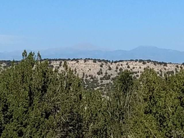 TBD Canyon Heights Rd #0, Pueblo, CO 81005 (MLS #182157) :: The All Star Team of Keller Williams Freedom Realty