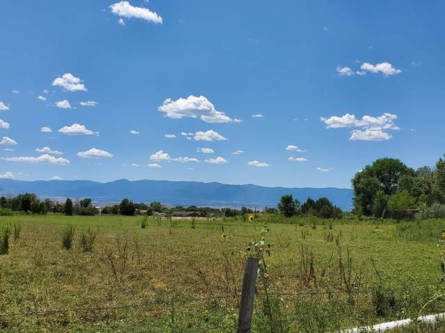 477 Hwy 115 #32, Penrose, CO 81240 (MLS #183308) :: The All Star Team of Keller Williams Freedom Realty