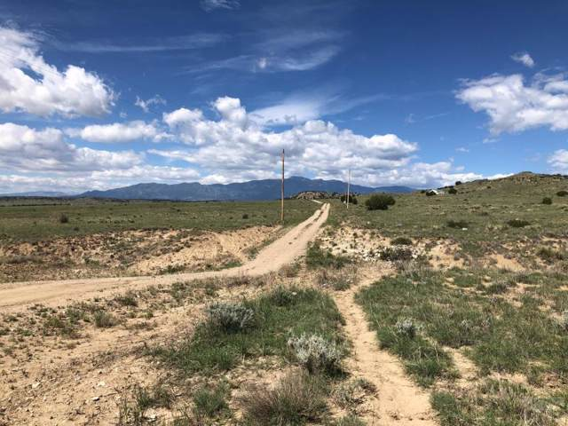Lot 135 County Rd 113 #0, Walsenburg, CO 81089 (MLS #183369) :: The All Star Team of Keller Williams Freedom Realty