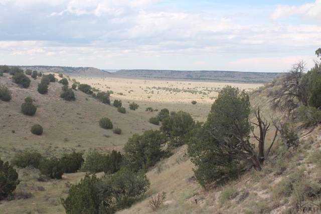 TBD County Rd 111 N/A, Thatcher, CO 81059 (MLS #184183) :: The All Star Team of Keller Williams Freedom Realty