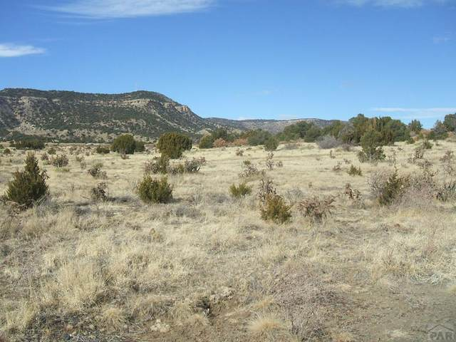 Parcel 6 County Rd 71.1 #6, Trinidad, CO 81082 (MLS #185942) :: The All Star Team of Keller Williams Freedom Realty
