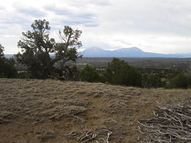 lot 24 Twin Lakes Ranches #24, Walsenburg, CO 81089 (MLS #186416) :: The All Star Team of Keller Williams Freedom Realty