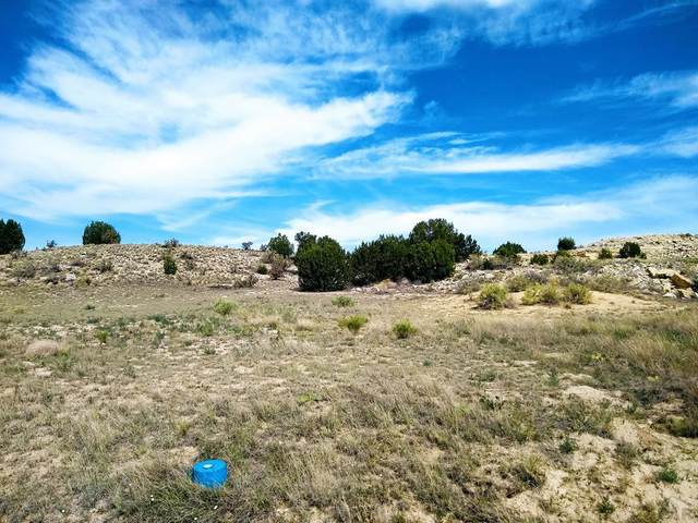 161 W Sunnyslope Dr #10, Pueblo West, CO 81007 (MLS #186842) :: The All Star Team