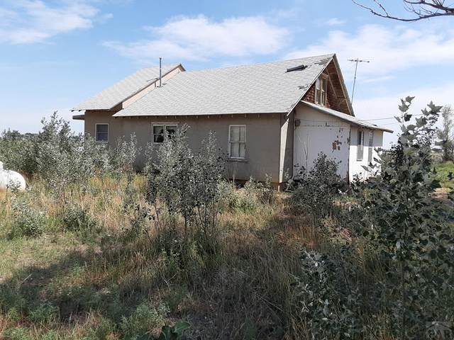 6200 17th Lane, Ordway, CO 81063 (MLS #187552) :: The All Star Team