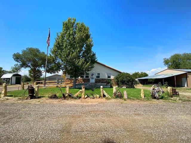 2207 Overton Rd, Pueblo, CO 81008 (MLS #187935) :: The All Star Team