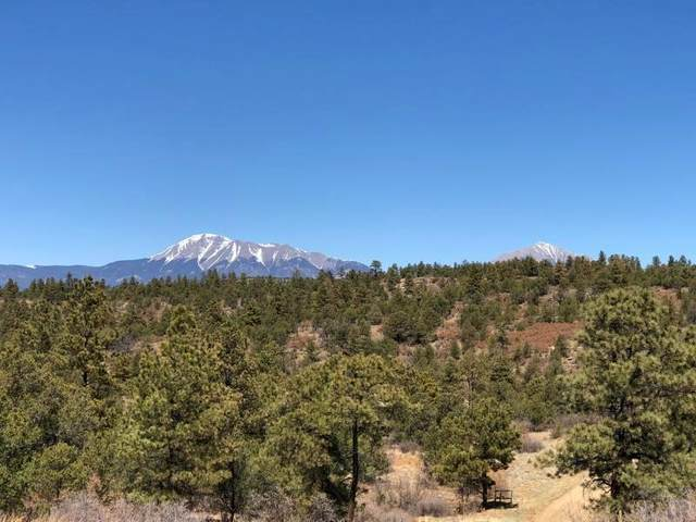 200 Acre No Site Address #0, Weston, CO 81091 (MLS #188086) :: The All Star Team