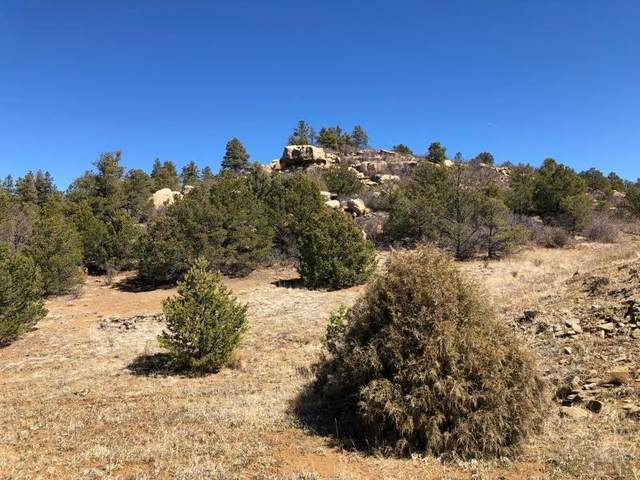 40 acres No Site Address #0, Weston, CO 81091 (MLS #188092) :: The All Star Team