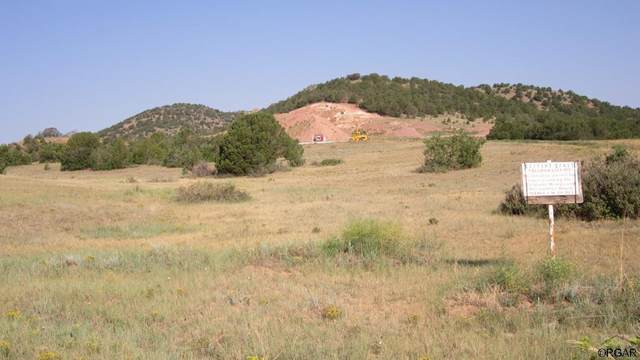 29435 County Rd 2 M&B, Canon City, CO 81212 (MLS #188104) :: The All Star Team