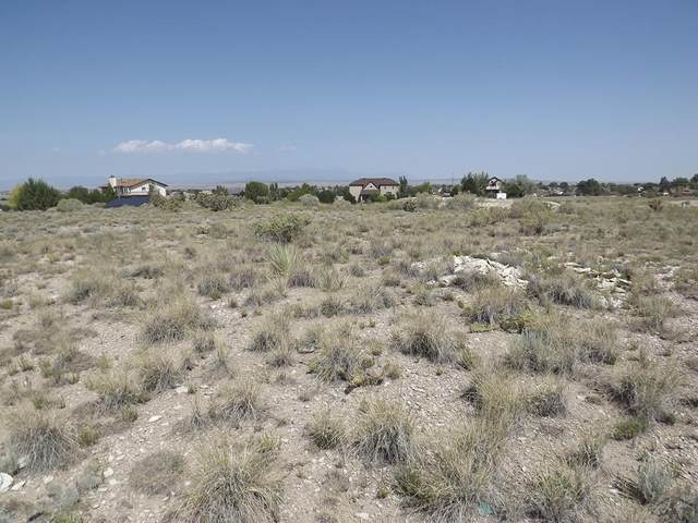 990 S Linden Pl #4, Pueblo West, CO 81007 (MLS #188125) :: The All Star Team