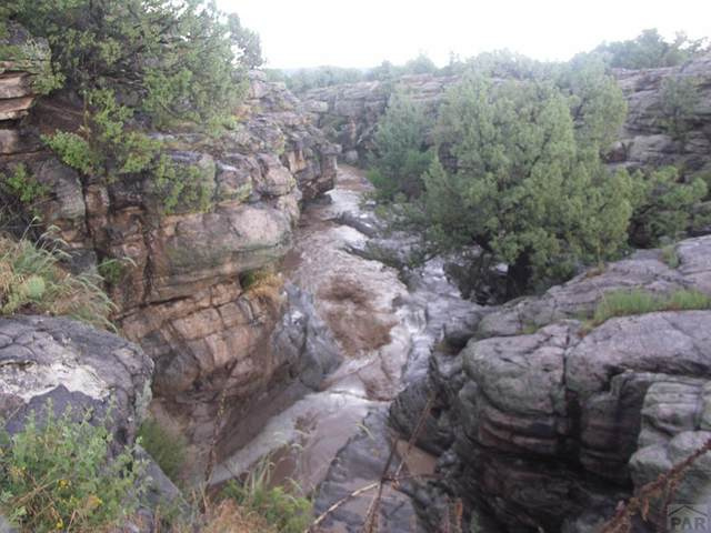 TBD W Red Creek Springs Rd N/A, Pueblo, CO 81005 (#188141) :: The Artisan Group at Keller Williams Premier Realty