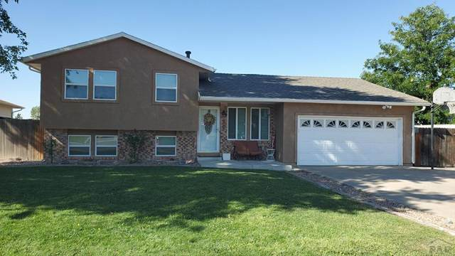 10 Mayweed Court, Pueblo, CO 81001 (MLS #188223) :: The All Star Team