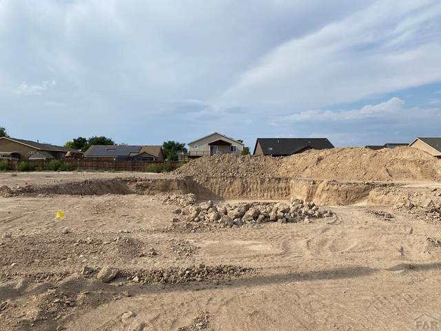 3133 Grizzly Ln, Pueblo, CO 81005 (MLS #188370) :: The All Star Team