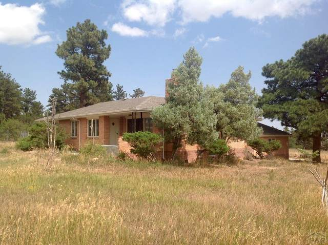7949 Hwy 165, Rye, CO 81069 (MLS #188373) :: The All Star Team