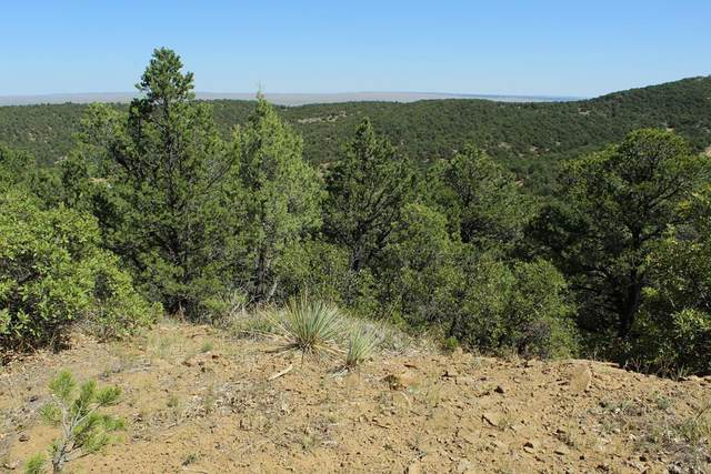 TBD Sunset Dr. #134, Aguilar, CO 81020 (MLS #188488) :: The All Star Team