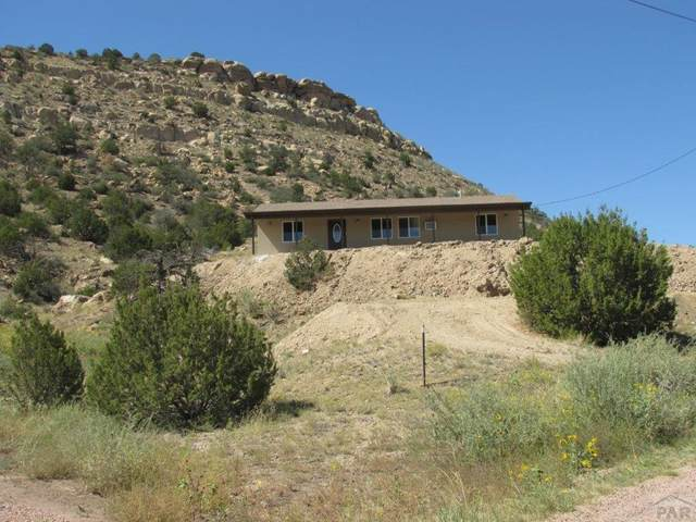 535 Shaft, Rockvale, CO 81244 (MLS #188532) :: The All Star Team